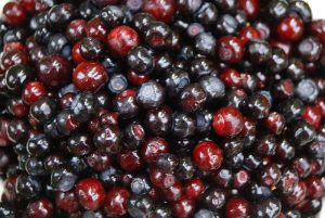 Five Health Benefits of Huckleberries